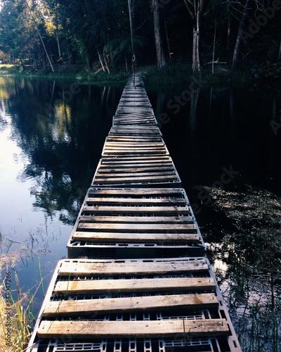Fényképezés Footbridge Over River In Forest