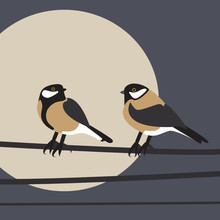 Simple Illustration Of Two Birds - Tomtits Sitting. Clean, Geometrical Vector File, Fully Editable For Various Purposes.