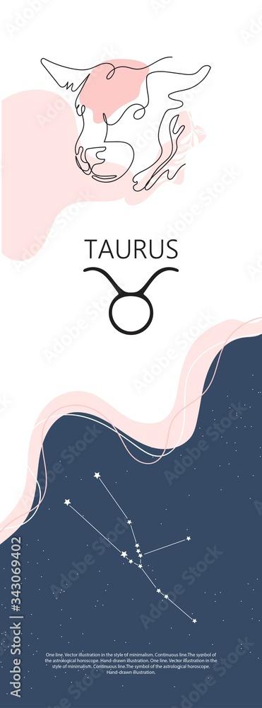 Fototapeta Zodiac background. Constellation Taurus. One line. Minimalistic graphics