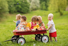 Group Of Five Toddlers Riding ...