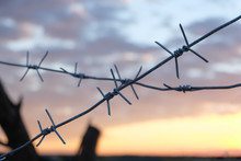 Crossed Barbed Wire On Sunset ...