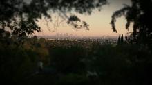 Tilt Shift Image Of Trees And City Against Sky