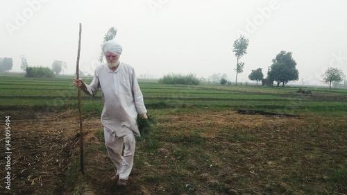 Fotografia, Obraz Full Length Of Senior Man Walking On Field Against Sky
