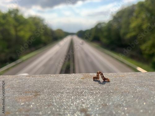 Die Entschleunigung der Autobahnraupe (auch als Video verfügbar) / the decelerat Canvas Print