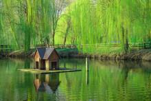 Animal Care Bird House Float O...