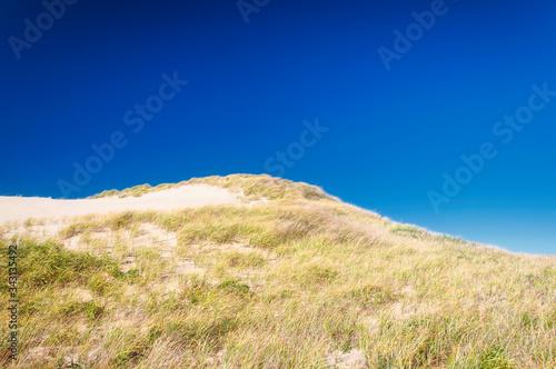 Photo Cape Cod National Seashore Massachusetts sand dunes
