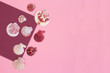 Pink Background With Shells Of...