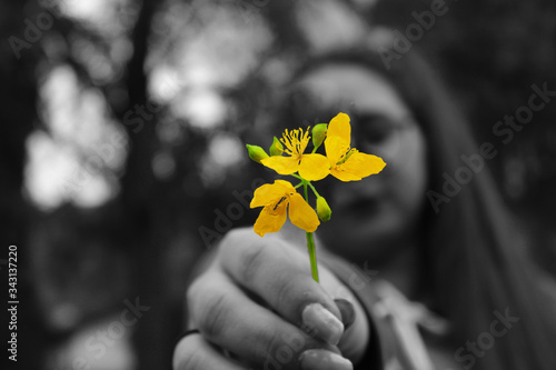 Fotografie, Obraz i colori della vita