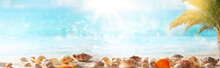 Beautiful Sand Beach Background With Seashells On The Seashore. Copy Space For Text.