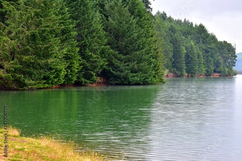 Photographie Scenic View Of Lake In Forest Against Sky