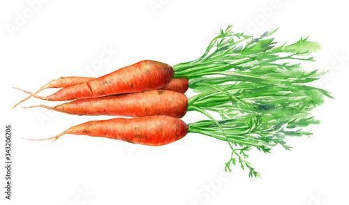 Foto Carrots
