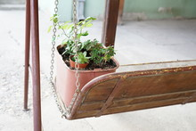 A Pot With A Plant On A Wooden Stand
