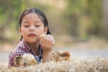 Happy Little Girl With Of Small Chickens Sitting Outdoor. Portrait Of An Adorable Little Girl, Preschool Or School Age, Happy Child Holding A Fluffy Baby Chicks With Both Hands And Smiling..