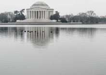 Birds Swimming In Tidal Basin By Thomas Jefferson Memorial Against Sky