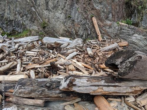 Photo Driftwood ashore
