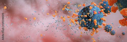 Obraz na plátně Coronavirus epidemic, Covid-19 viruses destroyed by soap