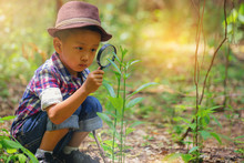 Happy Little Boy With Magnifying Glass Explorer And Learning The Nature At Home Backyard