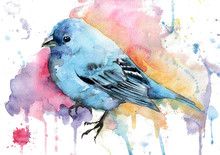 Hand Drawn Watercolor Blue Bir...