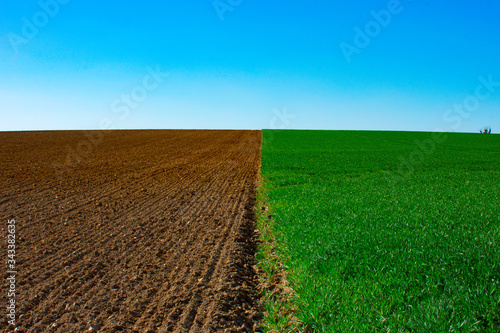 Fotomural plowed field and blue sky