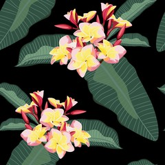 Fototapeta Egzotyczne Tropical floral background with plumeria flowers branch with leaves. Hand drawn botanical illustration for tropical party design.