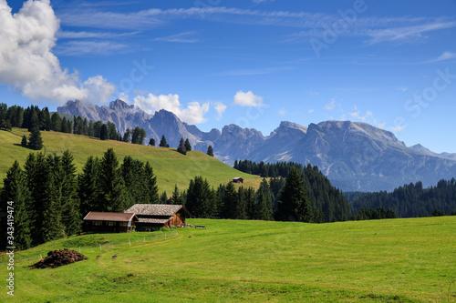 Fotografiet Alpe di Siusi, Trentino Alto Adige