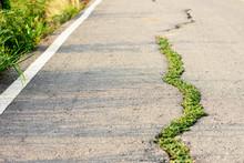 The Asphalt Road That Is Broke...