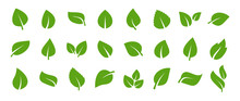 Set Of Green Leaf Icons. Green...