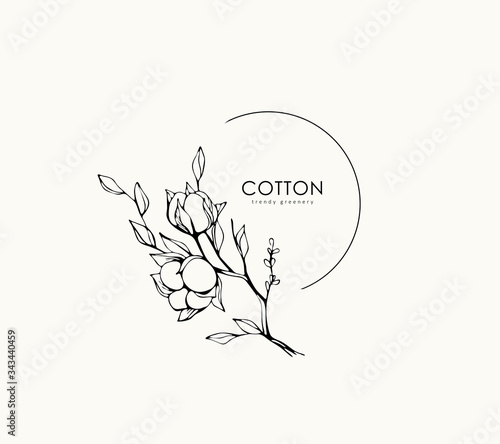 Cotton plant logo and branch Wallpaper Mural