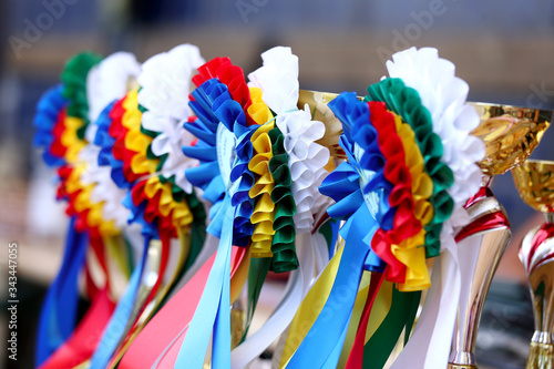 Photo Awards waiting to be assigned after equitation event on racetrack