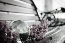 Close-up Of Flowers With Crystal Ball On Bench