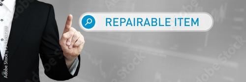 Fotomural Repairable Item