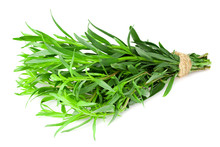 Bunch Of Tarragon Leaves Isola...