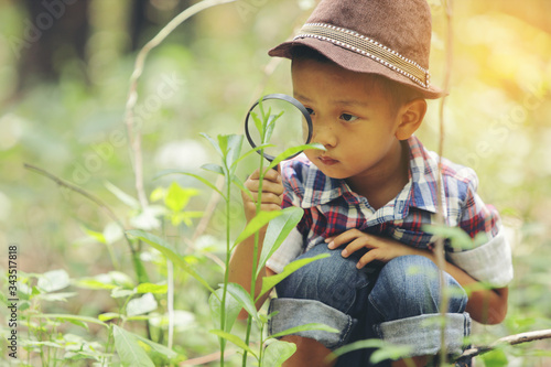 Photo An Asian boy is using a magnifying glass to look at the leaves