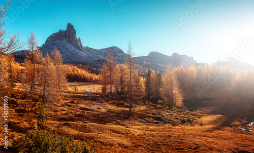 Wall mural - Fantastic sunny landscape in mountains with autumn forest. Wonderful summer scenery during sunset. Awesome alpine highlands under sunlit. Dolomites alps. Federa lake. Italy. Creative image
