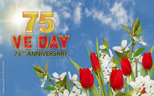 V-E Day 75th Anniversary - 8 May 1945 on against white frame, blue sky, red tul Wallpaper Mural
