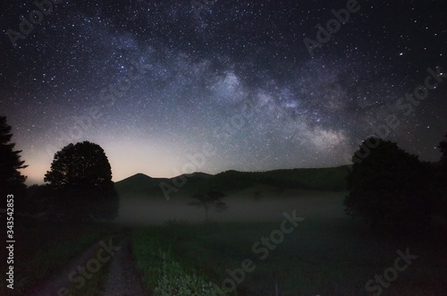 Scenics View Of Dirt Road With Trees And Grass Against Sky With Stars Wallpaper Mural