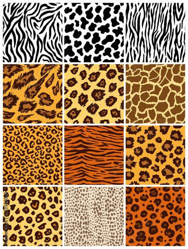 Animal seamless pattern set. Mammals Fur. Collection of print skins. Predators Camouflage. Cheetah Giraffe Zebra Leopard Holstein cattle Snake Jaguar. Printable Background. Vector illustration. Wall mural