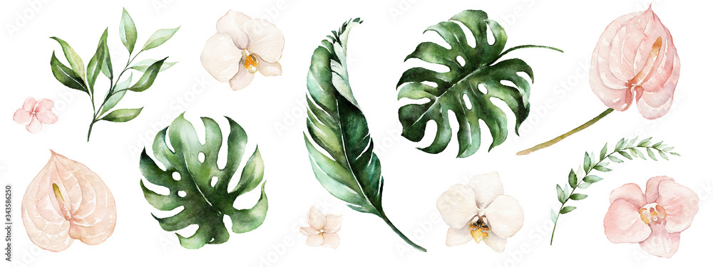 Fototapeta Watercolor tropical floral illustration set with green leaves and blush flowers for wedding stationary, greetings, wallpapers, fashion, backgrounds, textures, DIY, wrappers, postcards, logo, etc.