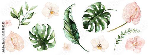 Watercolor tropical floral illustration set with green leaves and blush flowers for wedding stationary, greetings, wallpapers, fashion, backgrounds, textures, DIY, wrappers, postcards, logo, etc.