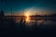 Sonnenaufgang über einem See mit vielen Mücken im Gras am Ufer