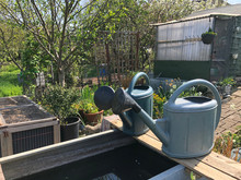 Watering Cans Left On An Allot...