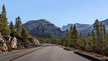 Landscape Along The Road Near Yosemite National Park In California, USA.
