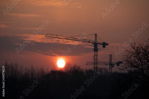 Fototapeta Wschód słońca nad lasem w otoczeniu dźwigów budowlanych obraz