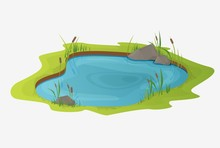Picturesque Water Pond With Reeds. The Concept Of An Open Small Swamp Lake In A Natural Landscape Style. Natural Natural Design In A Beautiful Color, Rural, Country Style Illustration.