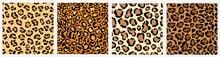 Patterns In Style - Leopard Sk...
