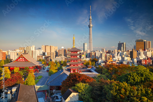 Fototapeta Tokyo. Cityscape image of Tokyo skyline during sunny autumn day in Japan. obraz