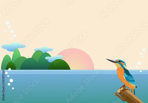 Cuadros en Lienzo カワセミと海の背景素材