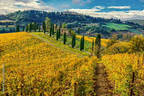 Chianti vineyards and the village of Radda in Chianti on the hilltop Fotobehang
