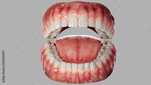 Photo 3d rendering of human teeth isolated on grey