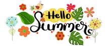 Hello Summer. Hello SUMMER! De...